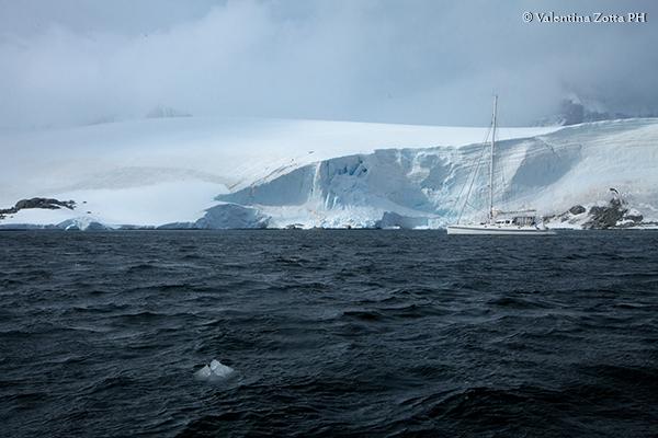 In catamarano dall'Antartide